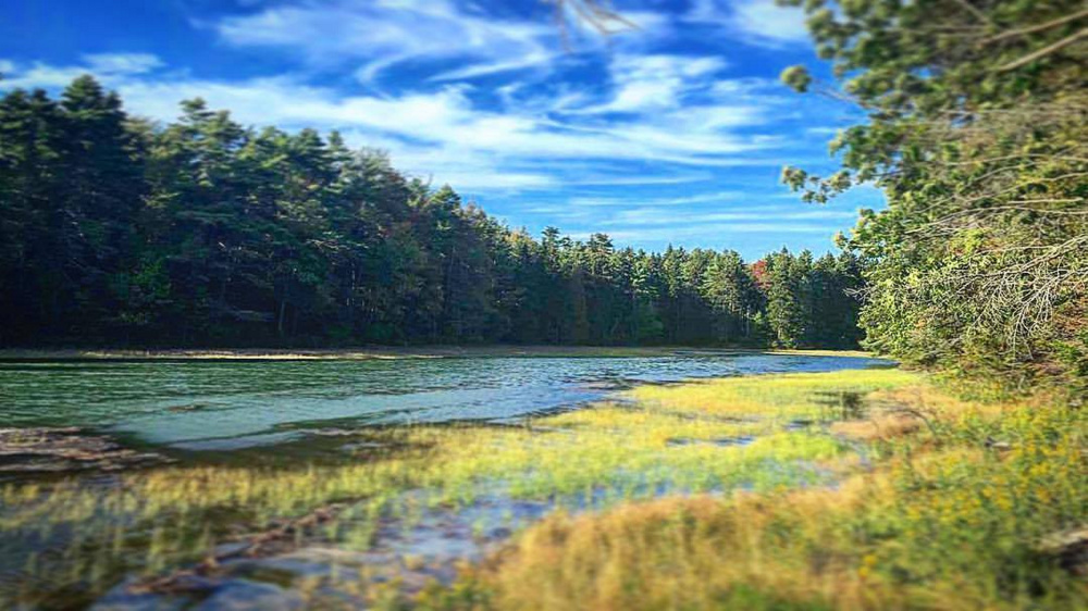 Strawberry Creek during a recent afternoon on Cliff Trail in Harpswell.