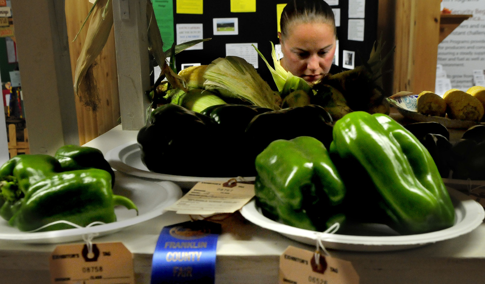 Ashley Brougham, of Chesterville, and others admire the entries of produce on display Tuesday in the agriculture building at the Farmington Fair. The fair runs daily through Saturday.
