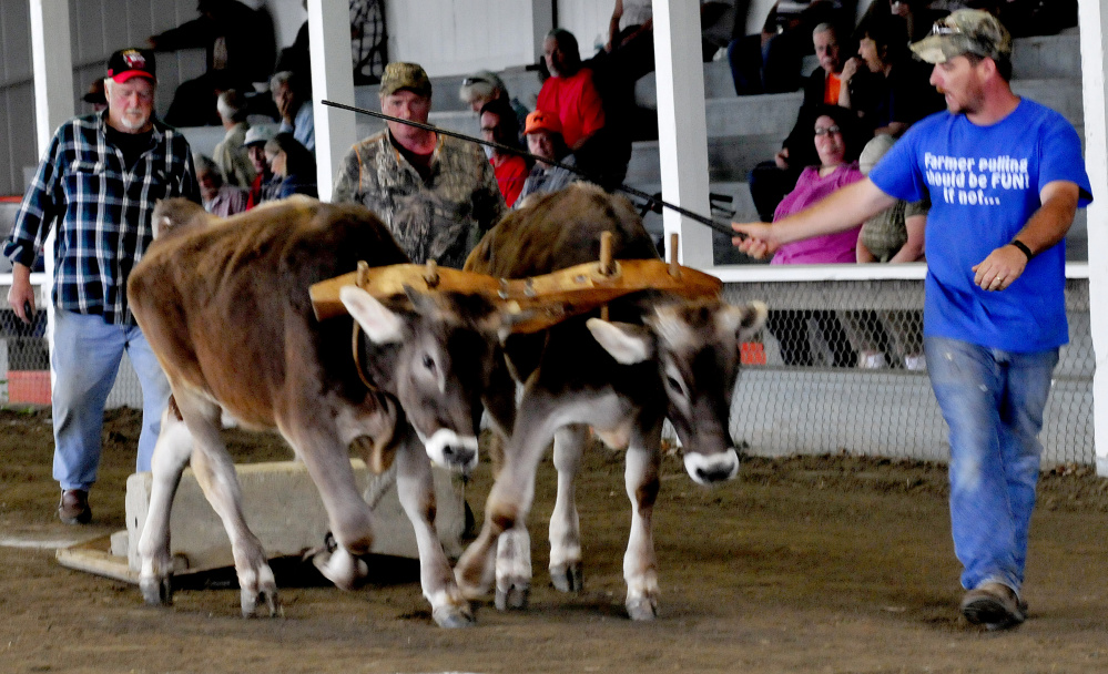 Jared Lane, of New Vineyard, urges his oxen Tom and Jerry to pull weight Tuesday during distance competition at the Farmington Fair. The fair runs through Saturday.