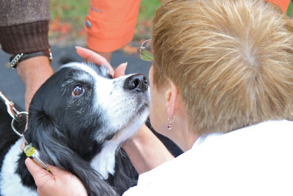 Cox Memorial United Methodist Church will hold a Blessing of the Animals Oct. 1 in Hallowell.