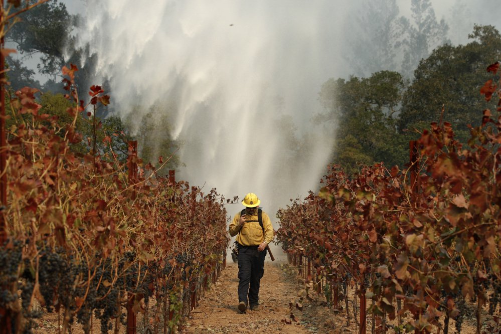 Firefighter Chris Oliver walks between grapevines as a helicopter drops water over a wildfire burning near a winery in Santa Rosa, Calif., on Oct. 14. Members of Congress toured wildfire-ravaged Northern California on Saturday.