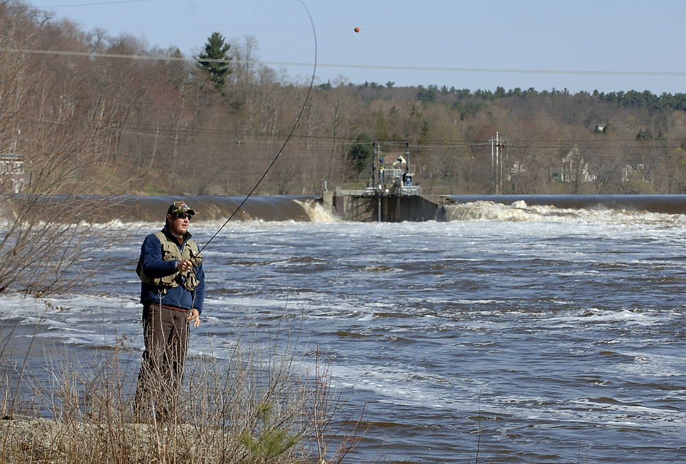 Salmon fishing resumes along the Penobscot River on opening day, May 1, 2008. The first catch of the season was traditionally sent to the U.S. president.