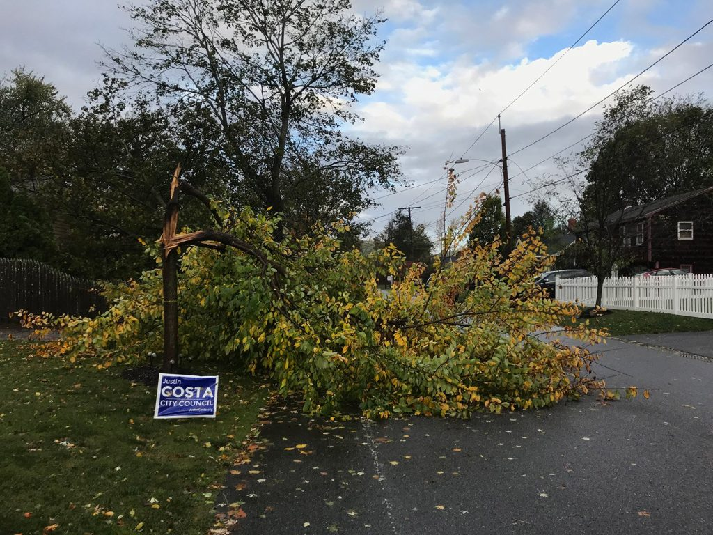 Photos Wind Storm Batters Maine Knocking Down Trees And Power Lines Centralmaine Com