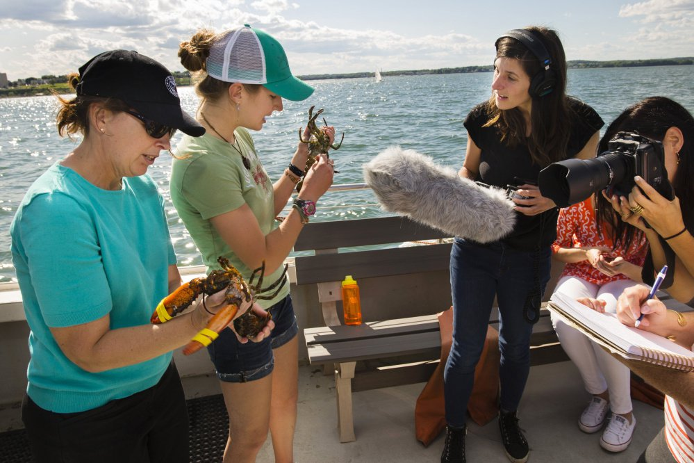 Maine Lobster Marketing Collaborative's Marianne LaCroix, left, and Rhoen Fiutak, a crew member aboard the fishing boat Lucky Catch, show the differences between male and female lobsters to journalists during a promotional tour for new-shell lobsters last summer in Portland. The collaborative has about six months to make its case for renewed funding; without it, the marketing group will cease to exist in October 2018.