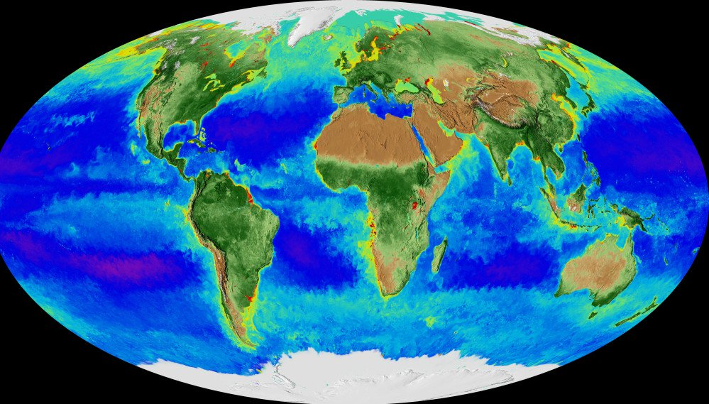 Image made from video released by NASA shows a projection of the Earth and its biosphere derived from two decades of satellite data starting in September 1997.