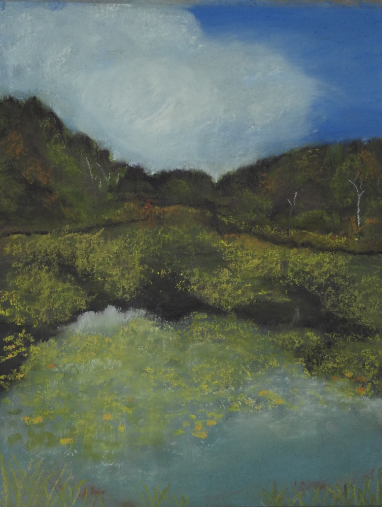 An exhibit of pastel drawing by Karin Sargent will be on view Nov. 2 through Jan. 2 at the Gibbs Library at 40 Old Union Road in Washington Village.