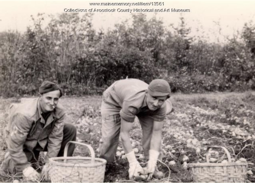 A German soldier works on the Lunn family farm in Littleton in 1945.