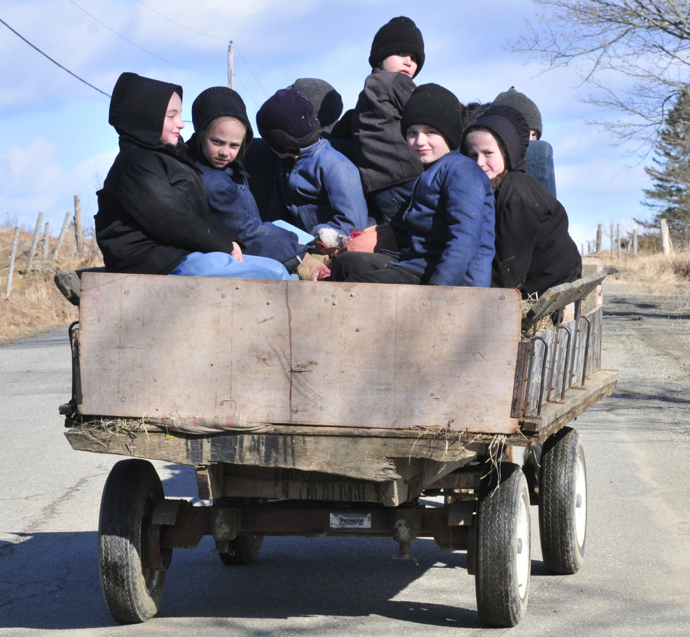 Amish community, Whitefield learning to coexist on roads