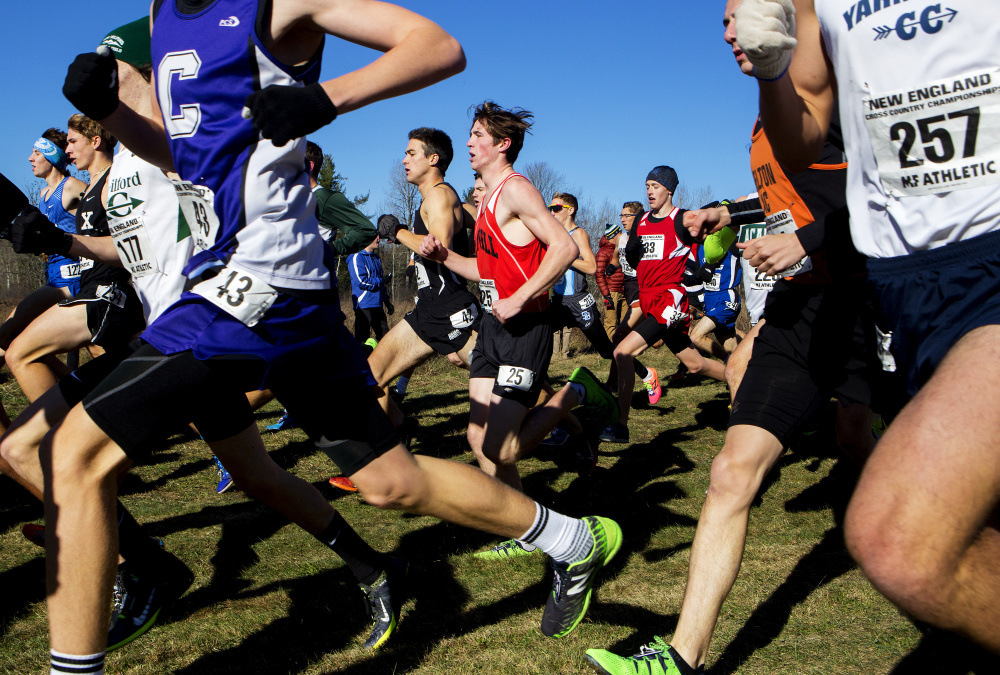 Runners jockey for position during the 83rd annual New England cross country championships Saturday at Troy Howard Middle School in Belfast.