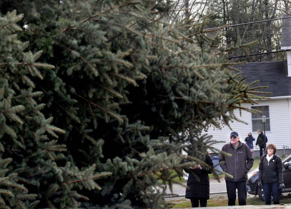 Joe Lemieux and his niece Bernadette LaCroix watch as the spruce tree he donated to the city of Waterville for Christmas is loaded on to a trailer Monday after it was cut down at his home in Fairfield.