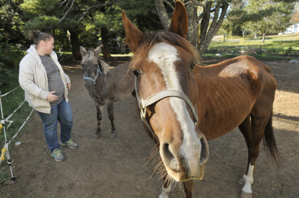 Kelsey Radley with Pocket the mule, center, and Zin the horse on Oct. 13 in Pittston.