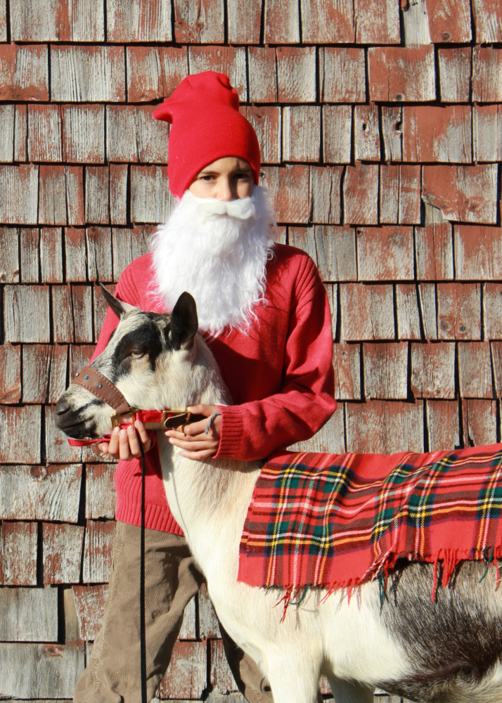 The Yule Goat and Tomten will visit with children between 11 a.m. and 2 p.m. with a special story time at noon and 1 p.m. Dec. 3 and 17 at Pumpkin Vine Farm in Somerville.