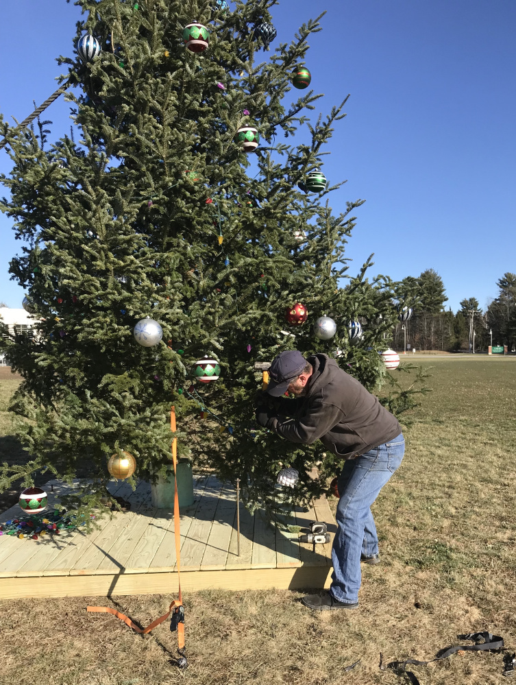 Chelsea Selectman Matt Pushard works to straighten the town's Christmas tree  Thursday in advance of Saturday's holiday festivities.