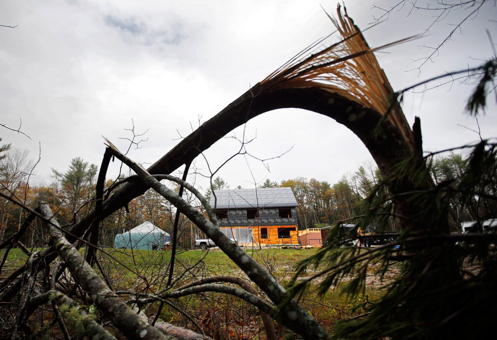 Broken trees frame Corey and Rachel Graham's home and yurt following a wind storm in Freeport on Oct. 30. The couple is living in the yurt while building a home. The storm toppled more than 20 pine trees on their lot but caused only minor damage to their property.