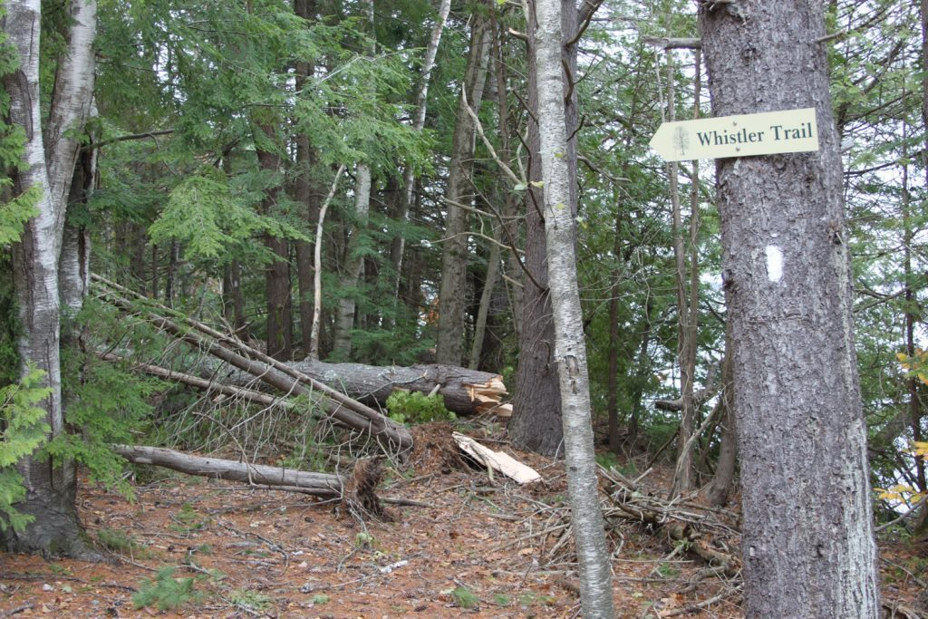 The sign at the Whistler Trail in Butler Head is the only indication a trail exists in the wake of storm damage.