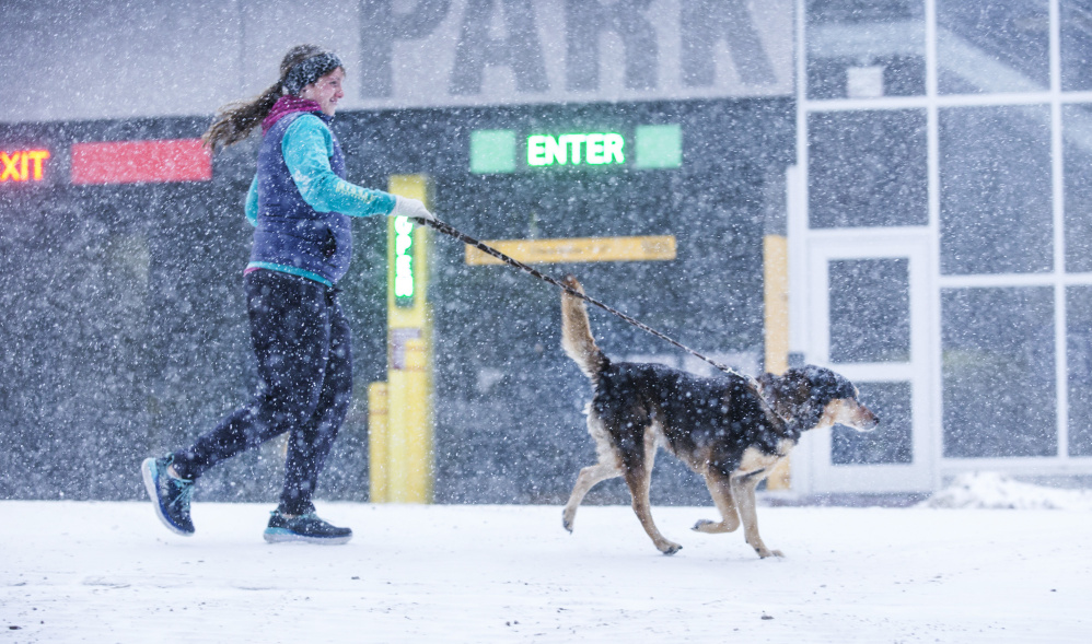Erin Abraham runs with her dog, Kaylee, on Fore Street in Portland in near-whiteout conditions during the snowstorm on Thursday.