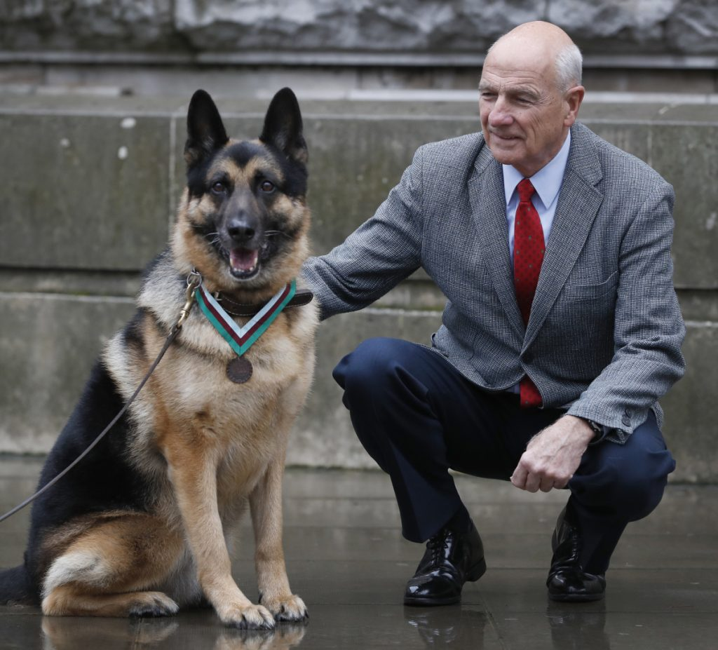 John Wren from Long Island, New York, is shown with military working dog Ayron, who received the PDSA Dickin Medal, the animal equivalent of the Victoria Cross, on behalf of the Wren family dog Chips in London on Monday.