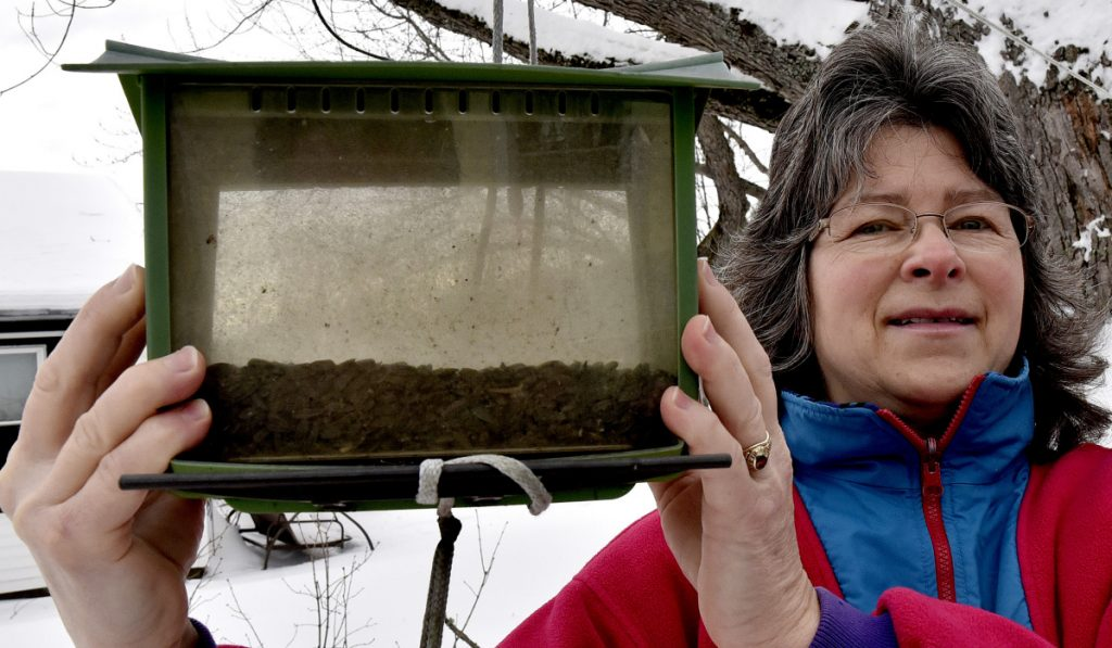 "Cathy McFarland has plenty of bird seed but no birds at her home in Skowhegan. ""I'm really sad there are no birds this winter,"" McFarland said Thursday. ""They make me so happy."""