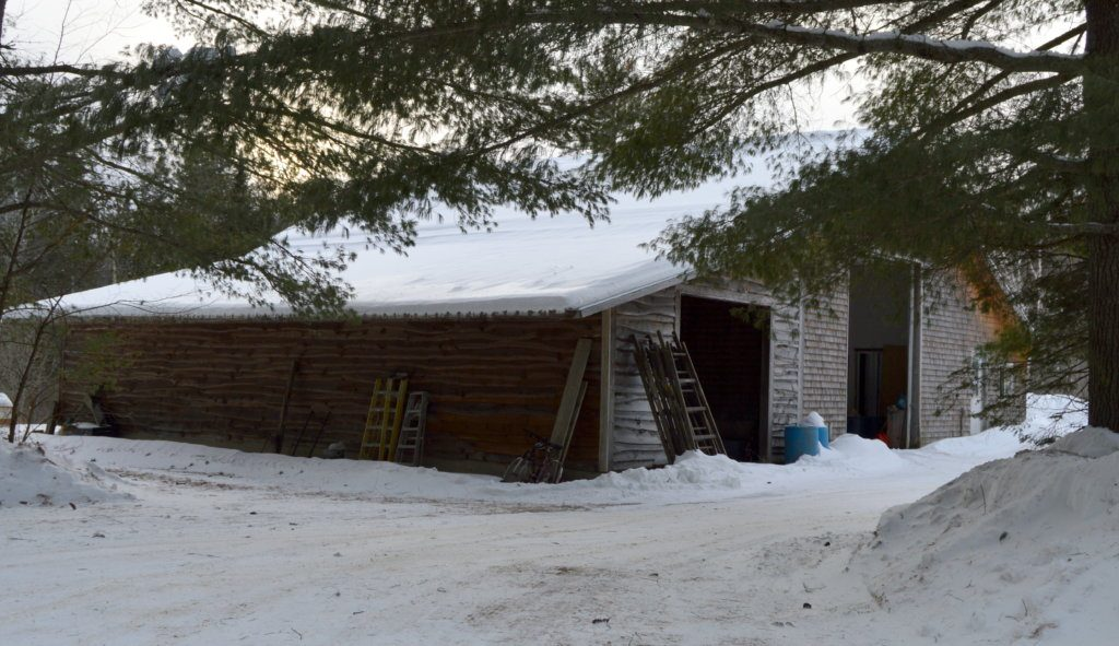 Nine beagles were seized from an open, unheated garage in Freeman Township in December. David Ellis, 46, of Avon was charged with animal cruelty but is not expected to be prosecuted if he agrees to follow animal welfare laws and pay restitution.