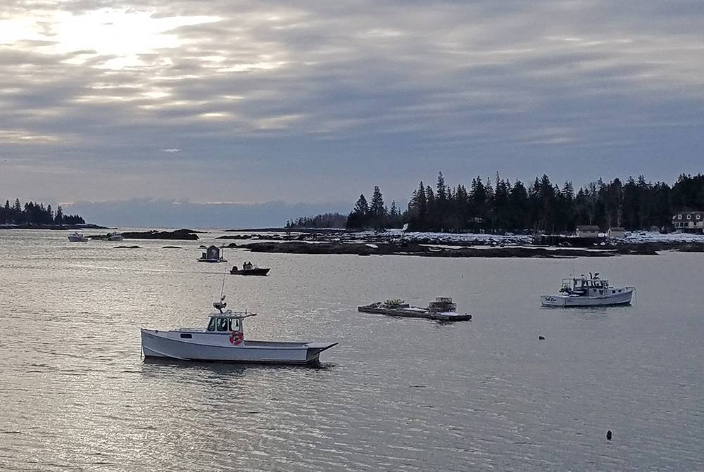 Paul Benner of Thomaston left to go clamming from the former Great Mussel Farm dock off Long Cove Road in St. George.  This photo was taken Friday morning from the dock.
