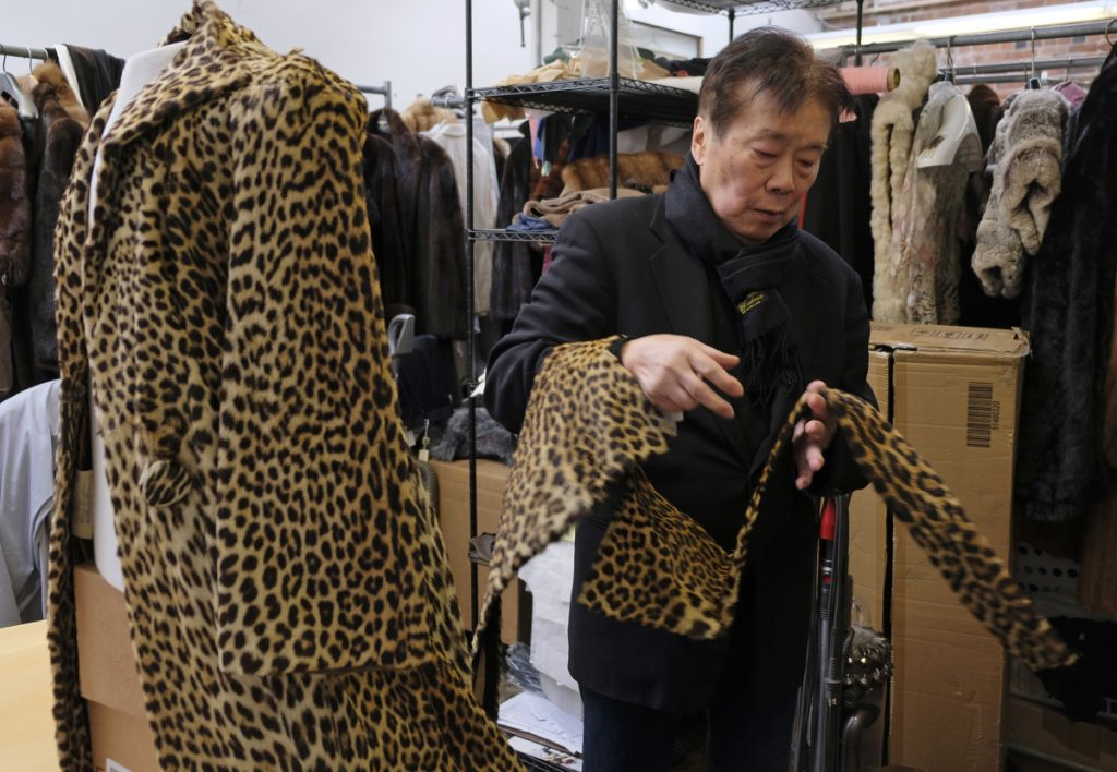 Benjamin Lin looks over a 60-year-old cheetah jacket he is restoring at the B.B. Hawk showroom in San Francisco. A city board voted unanimously to ban the sale of fur Tuesday to the chagrin of some business owners who don't like being told what they can or can't sell.