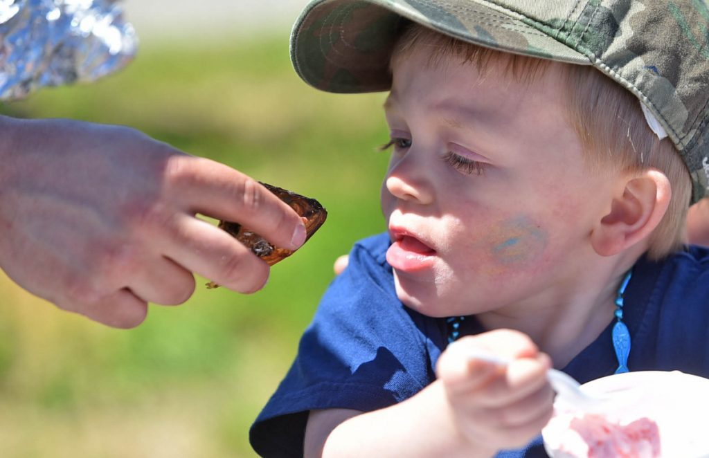Austin Hood, 2, comes eye to eye with a smoked alewife as he prepares to take a bite out of its head while holding an ice cream chaser at the annual Benton Alewife Festival at Family Fun Park in Benton on May 20, 2017.