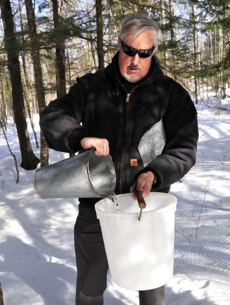 Iver Lofving collects sap from maple trees in 2017 behind the Chez Lonndorf sap house on Burrill Hill Road in Skowhegan in preparation for Maine Maple Sunday.