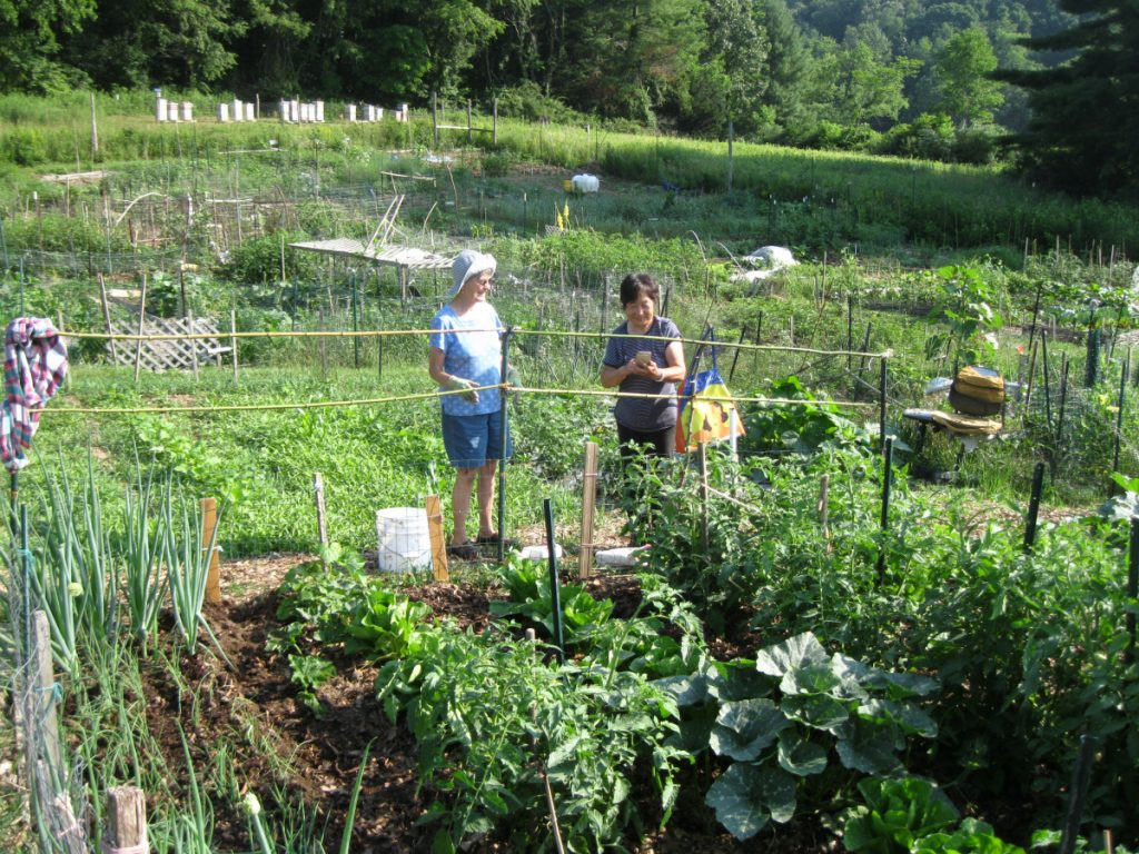 Alice Bonnegat, left, and Stacy Fields in the community gardens at Vile Arboretum last year.