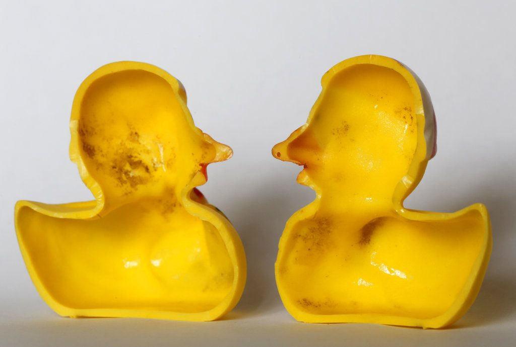 "The Swiss Federal Institute of Aquatic Science and Technology said on Tuesday, researchers turned up ""dense growths of bacteria and fungi"" on the insides of toys like rubber ducks and crocodiles."