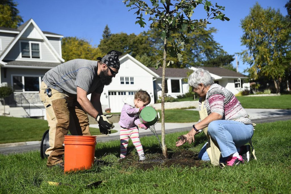 This year, National Arbor Day will be celebrated on Friday, April 27.