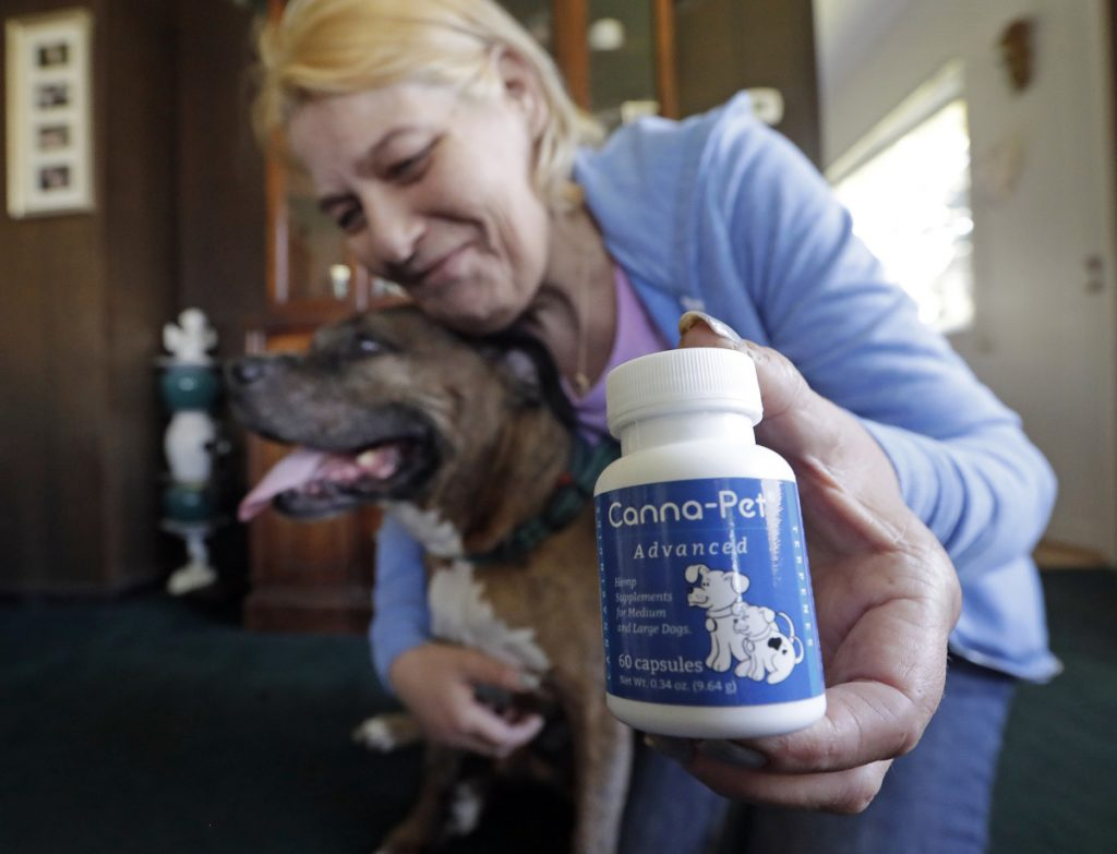 Associated Press/Elaine Thompson Karen Rhodes of Seattle holds her aging dog Ransom as she displays the hemp-derived CBD supplements she gives him for hip pain.