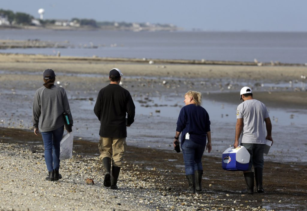 Left to right, Karlie Woodard, Patrick Seiler, and Pamela McKenzie and Rabeh El Shesheny of St. Jude Children's Research Hospital  collect samples in May at Kimbles Beach in New Jersey.
