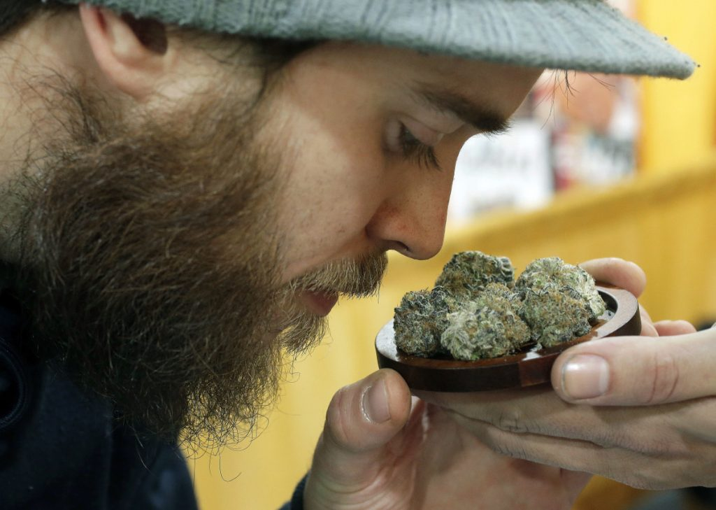 Julian Clark of Westerly, R.I., smells a strain of marijuana flowers at a trade show in Worcester, Mass. Maine, Vermont and Massachusetts have legalized recreational marijuana, but there is still no place to buy pot legally in the region.