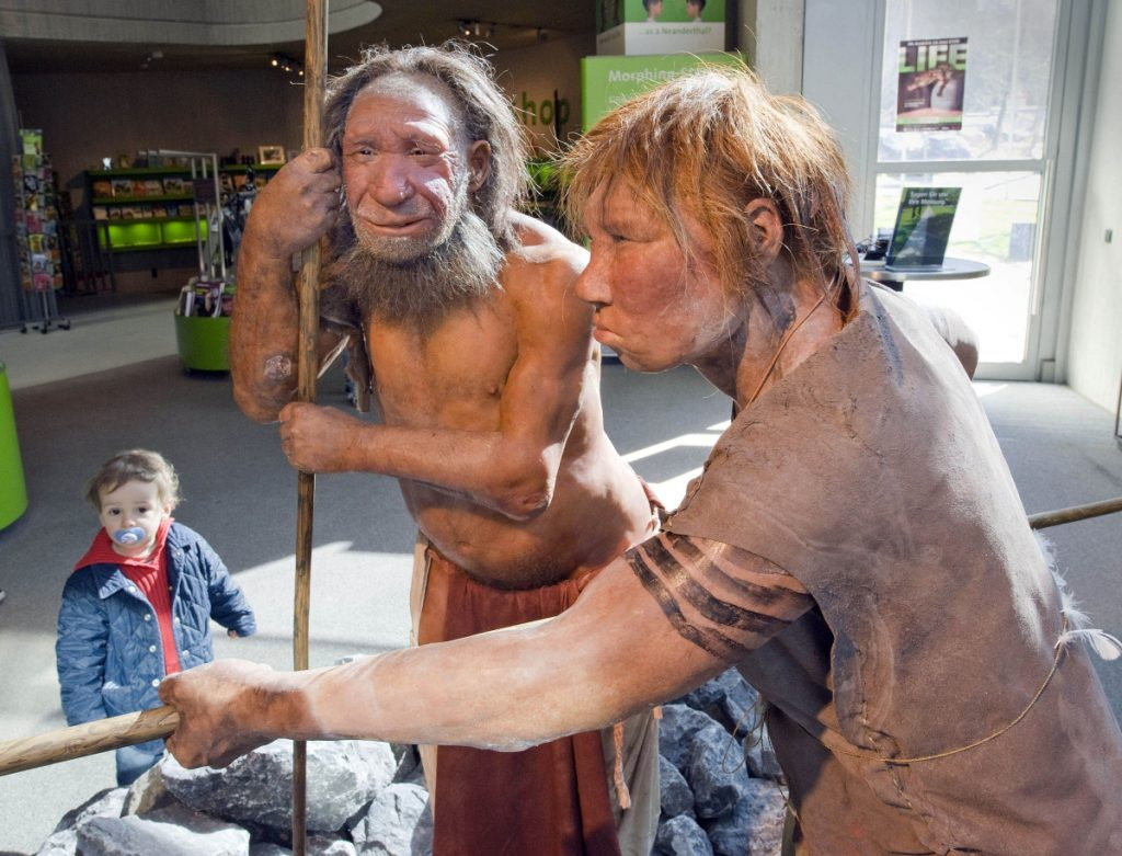 "The prehistoric Neanderthal man ""N,"" left, is visited for the first time by another reconstruction of a homo neanderthalensis called ""Wilma,"" right, at the Neanderthal museum in Mettmann, Germany, in 2009."