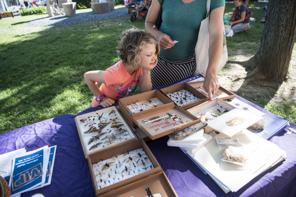 Haley Carmichael and her daughter Malia, 6, check out insect displays Thursday at the Maine SNAP-Ed kids club table at Castonguay Square, adjacent to the Waterville Farmers Market.