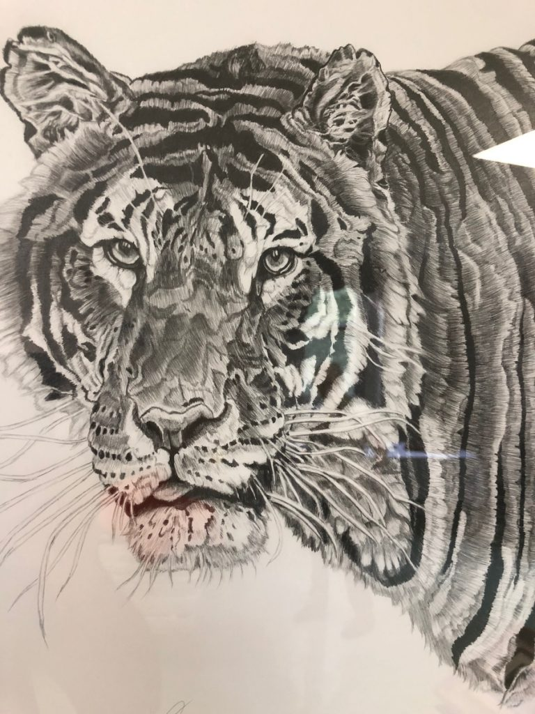 A graphite drawing of a tiger, seen at a recent Togus art show, was created by Neal Caron, of Oakland.