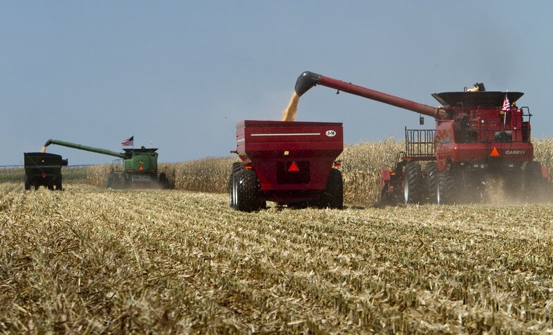 Combines harvest a cornfield during a demonstration at the Husker Harvest Days fair in Grand Island, Neb., in a 2010 file photo.