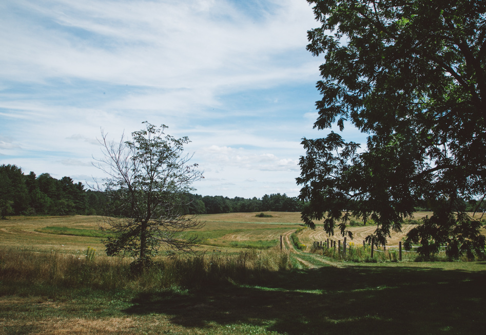 Rolling Acres in Jefferson is now home to the Joseph A. Fiore Art Center. For the third summer Maine Farmland Trust is opening the art center for visitors to see the work of the summer's artists in residence.