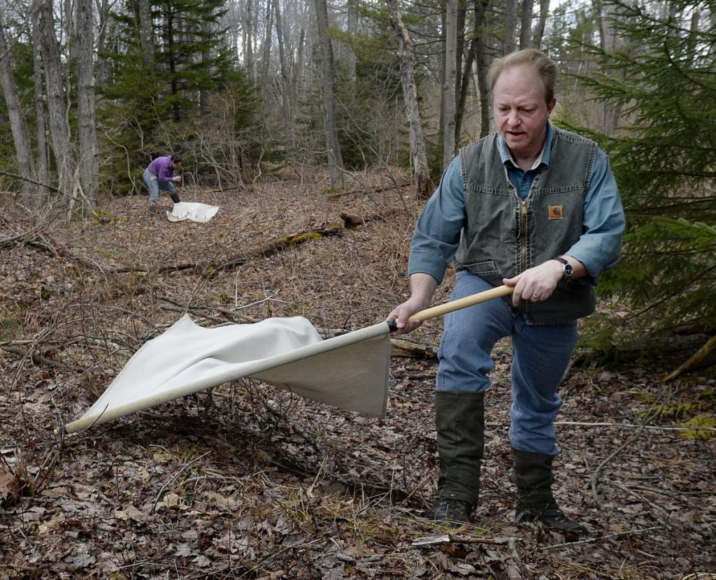 Biologist Chuck Lubelczyk uses high muck boots and gaiters to avoid tick bites – and a second bout of Lyme disease.