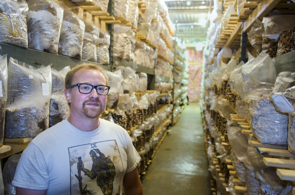 Mark Robinson stands in one of many rows of shelves full of inoculated mushroom substrates Friday in the climate-controlled growing room at Maine Cap N' Stem Mushroom Co. in Gardiner.