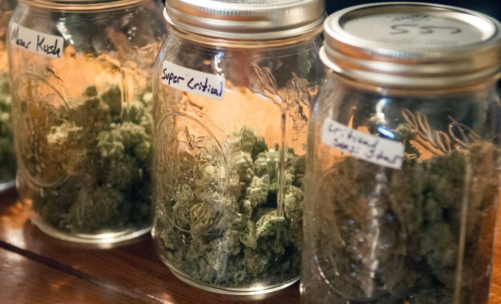 Derek Wilson grows medical marijuana and sells it at his new business, The Cannabis Healing Center, in 2017 in Hallowell.