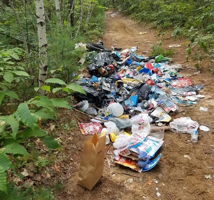 Maine Forest Rangers are investigating the illegal dumping of trash on a gravel road in Fryeburg.
