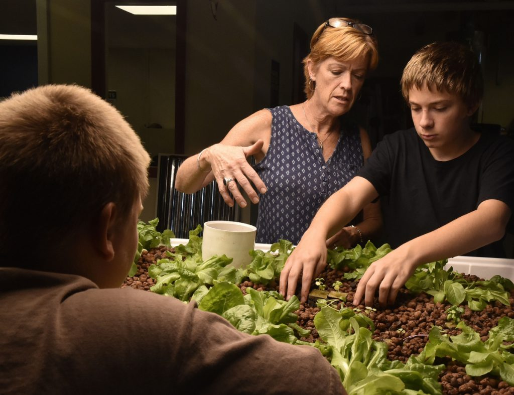 Madison Junior High School teacher Julie Wallace assists Aiden Taylor, right, with an aquaponics project as Dusty Corson looks on in an alternative education class on Thursday.