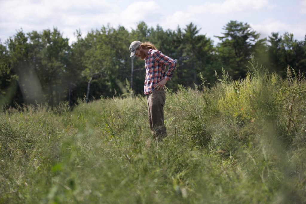 Ian Jerolmack, owner of Stonecipher Farm in Bowdoinham, lost half his crops this year because migrant workers he expected from Mexico never made it to Maine.