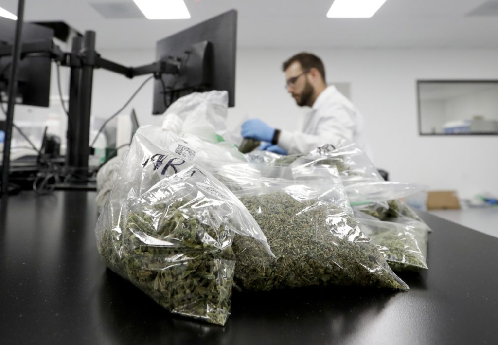 Marijuana samples await testing at Cannalysis, a testing laboratory in Santa Ana, Calif. Cannalysis has found mold on some cannabis products but the sample still passed current state tests, leading the company to urge regulators at a state hearing last month to add a new test that company officials say can detect a large number of potentially harmful species of mold and yeast not currently covered in state guidelines.