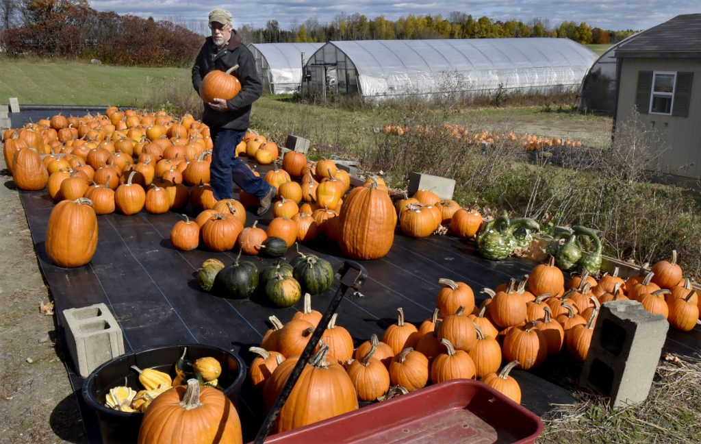 Farmer Richard Freeman carries one of the many pumpkins he grows and sells at his Hilltop Farm and Greenhouses in Fairfield Center on Monday. Freeman said he is still learning about and in favor of the proposed food sovereignty ordinance the town is considering.