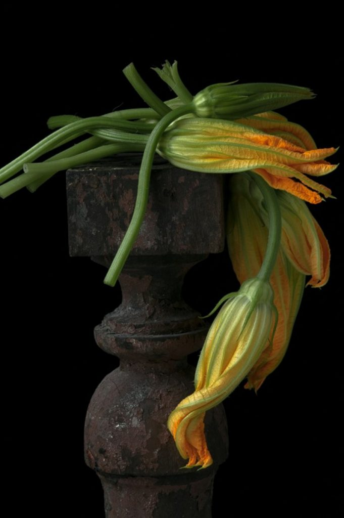 Draped Squash Blossoms included in the current Art in the Capitol exhibit by the Maine Arts Commission, a free exhibit now on view at the Maine State Capitol complex in Augusta through Dec. 31.