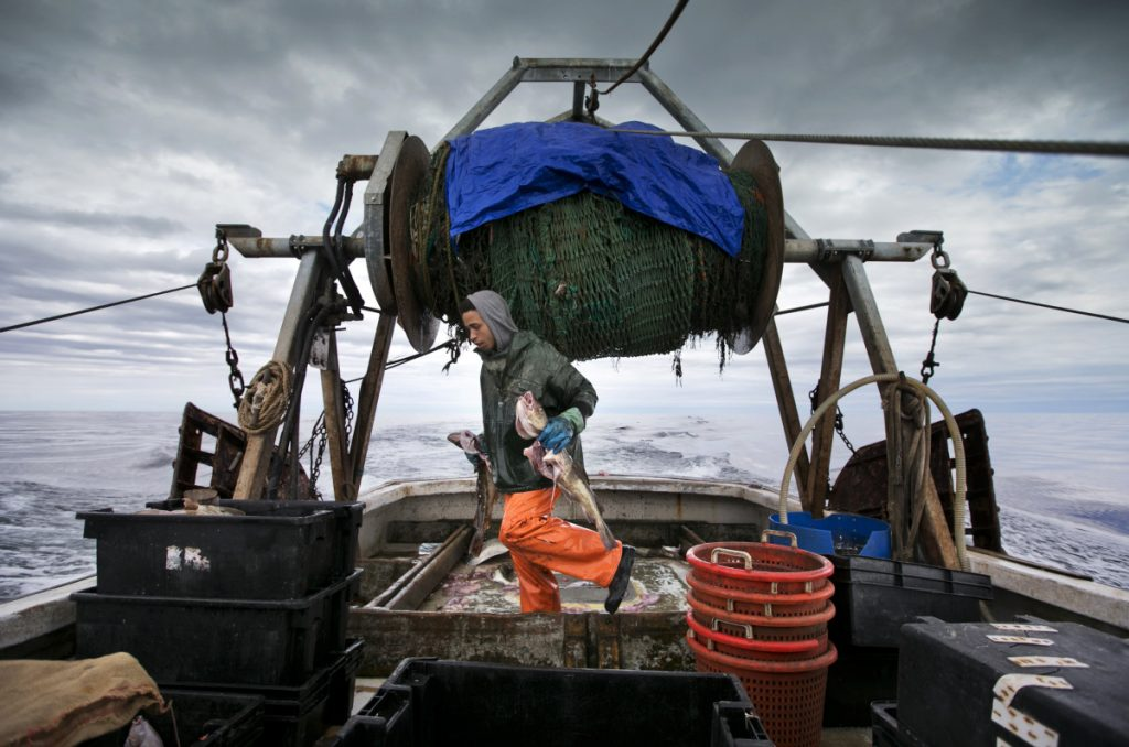 Elijah Voge-Meyers carries cod caught in the nets of a trawler off the coast of New Hampshire in 2016. American fishermen expect to lose thousands of pounds of valuable fishing quota under a new catch share agreement with Canada for the 2019 fishing year.