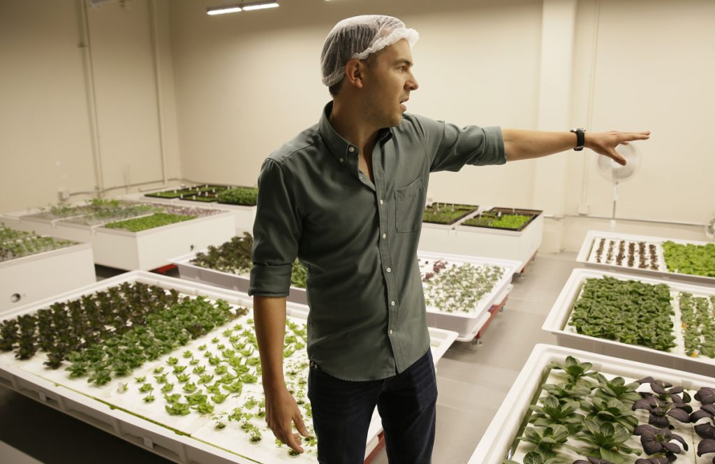 Iron Ox CEO Brandon Alexander looks out at his robotic indoor farm in San Carlos, Calif.
