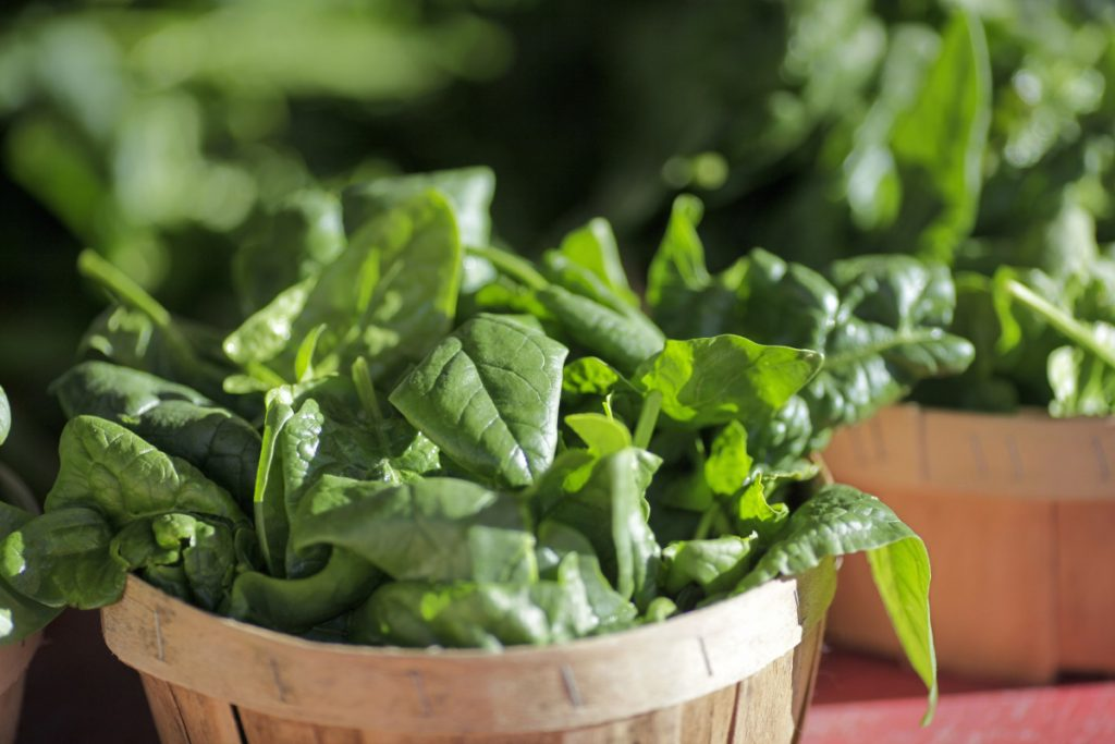 Baskets of organic spinach and other leafy greens are displayed for sale in 2016. With romaine lettuce off the market, spinach could be an alternative for salads. Hannaford's Back Cove store in Portland had long rows of boxed spinach salad Wednesday, below multiple printed notices of the voluntary recall of all romaine products.